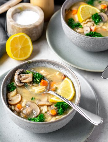 mushroom orzo soup side view